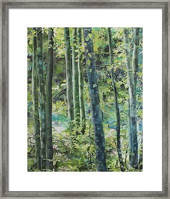 Trees Of Riverbank Framed Print by Sandrine Pelissier