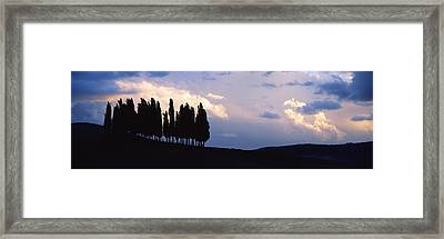 Trees On A Hill, Crete Senesi, Tuscany Framed Print