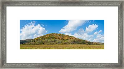 Trees On A Hill, Humphrey Road Framed Print by Panoramic Images