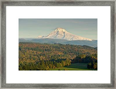 Trees On A Landscape With Mountain Framed Print