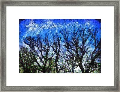 Trees On Blue Night Sky Digital Painting Artwork Framed Print by Amy Cicconi