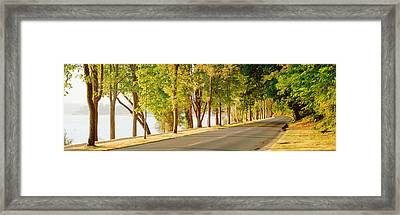 Trees On Both Sides Of A Road, Lake Framed Print by Panoramic Images