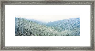 Trees On Mountain, Newfound Gap, Great Framed Print by Panoramic Images