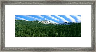 Trees On Mountain, Rendezvous Mountain Framed Print by Panoramic Images