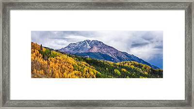 Trees On Mountains, San Juan National Framed Print