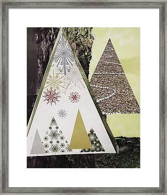 Trees On Stone Framed Print by Matthew Hoffman