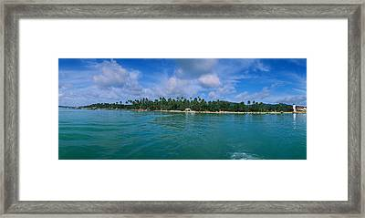 Trees On The Beach, Phuket, Thailand Framed Print