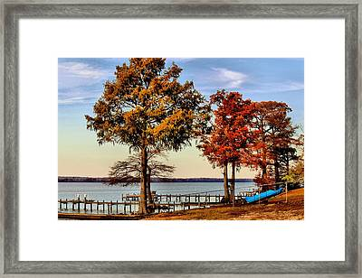 Trees On The Riverbank Framed Print by Carolyn Ricks