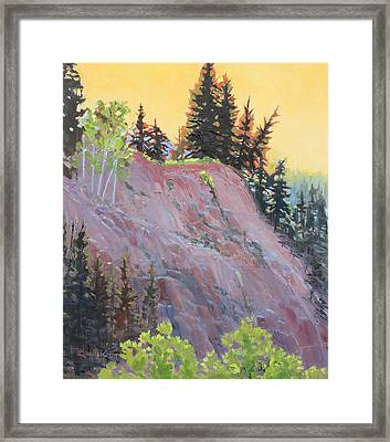 Trees On Top Framed Print by Susan McCullough
