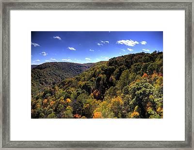 Trees Over Rolling Hills Framed Print