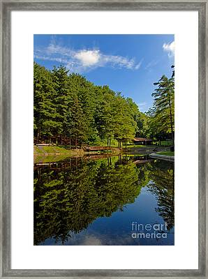 Trees Reflected On Mirrored Lake  Framed Print