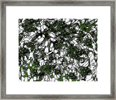 Trees  Framed Print by Shabnam Nassir