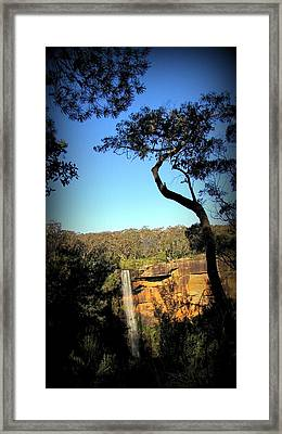 Trees Shadow Framed Print