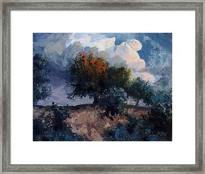 Trees Framed Print by Stanislav Atanasov