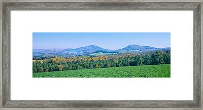 Trees With A Mountain Range Framed Print