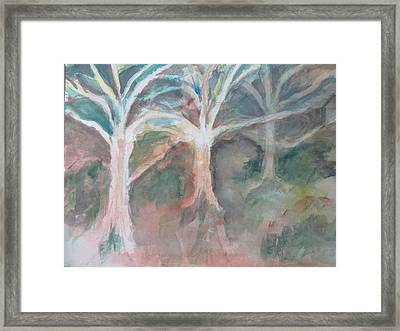 Trees Without Leaves Framed Print
