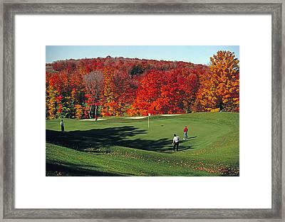 Treetops Golf Framed Print by Dennis Cox WorldViews