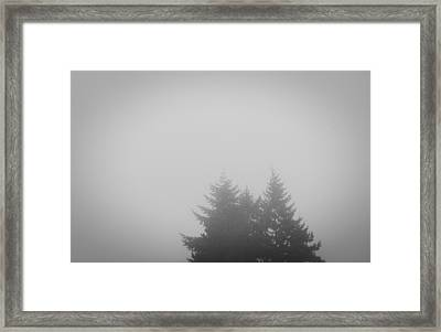 Treetops In Fog Framed Print by John Rossman