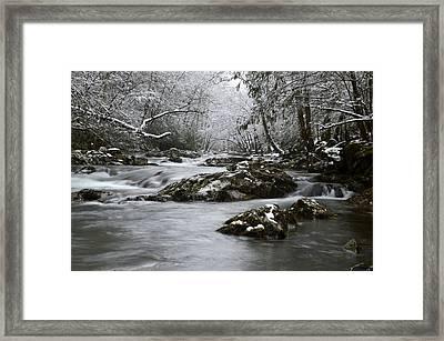 Tremont Winter Framed Print