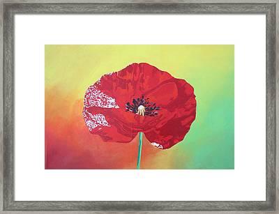 Trendy Poppy  Framed Print by Tracey Harrington-Simpson