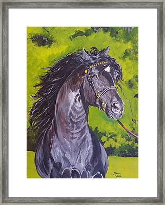 Framed Print featuring the painting Trenewydd King Flyer by Janina  Suuronen