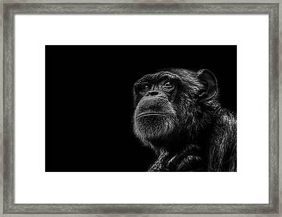 Trepidation Framed Print