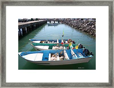 Framed Print featuring the photograph Tres Pangas by Dick Botkin