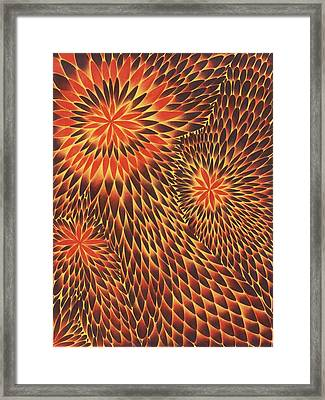 Tres Framed Print by Zachary Worth