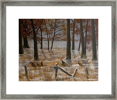 Trespassers Framed Print
