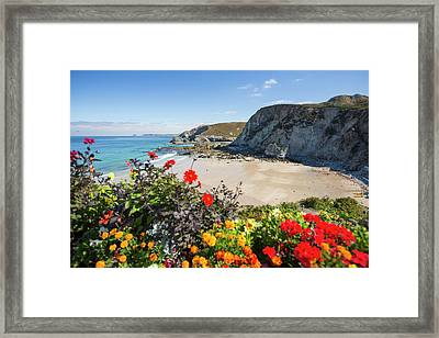 Trevaunance Cove In St Agnes Framed Print by Ashley Cooper