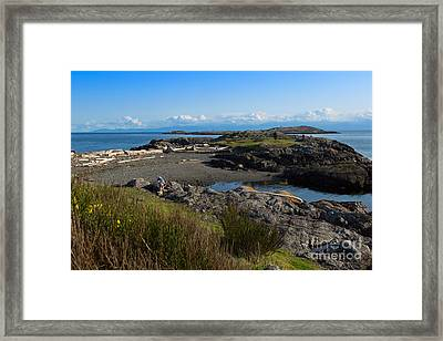 Trial Island And The Strait Of Juan De Fuca II Framed Print by Louise Heusinkveld