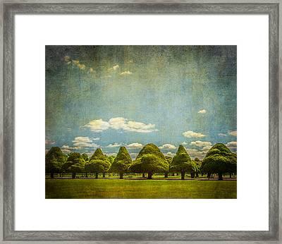 Triangular Trees 003 Framed Print