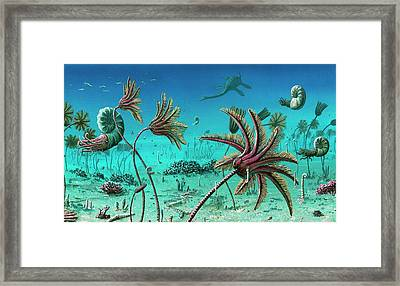 Triassic Underwater Scene Framed Print