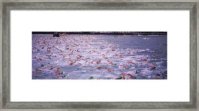 Triathlon Athletes Swimming In Water Framed Print by Panoramic Images