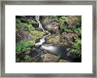 Triberg 2411 Framed Print by Alexander Kunz