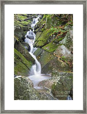 Porcupine Brook - Kinsman Notch New Hampshire Framed Print by Erin Paul Donovan