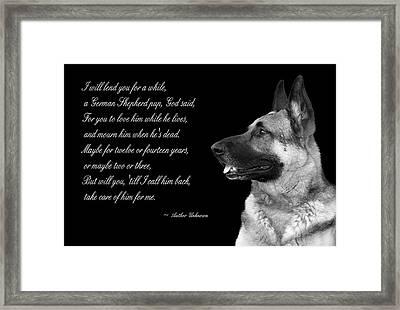 Tribute To German Shepard Framed Print by Cecil Fuselier