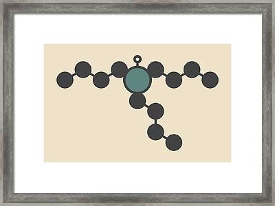 Tributyltin Hydride Molecule Framed Print