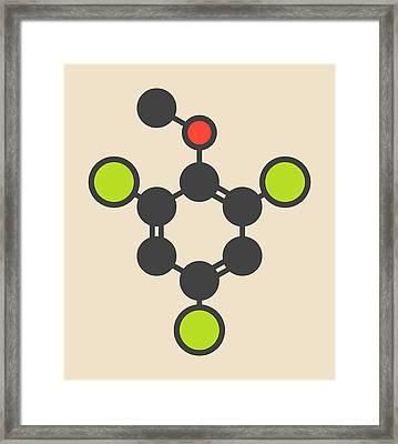 Trichloroanisole Cork Taint Molecule Framed Print by Molekuul