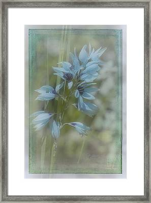 Framed Print featuring the photograph Tricia by Elaine Teague