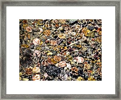 Trickle Down Theory Framed Print