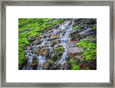 Trickle Trickle 2 Waterfall Glacier National Park Framed Print by Rich Franco