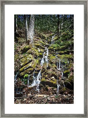 Trickling Through The Moss Framed Print