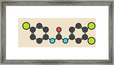 Triclocarban Antibacterial Agent Molecule Framed Print