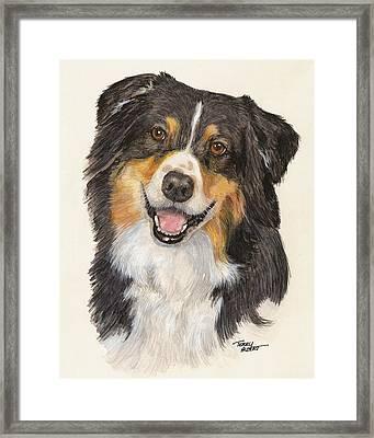 Tricolor Australian Shepherd Framed Print