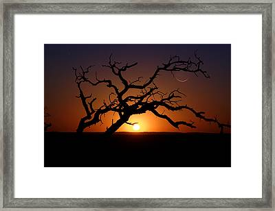 Trifecta Of Celestial Objects Comet Panstarr - Enchanted Rock Texas Hill Country Framed Print