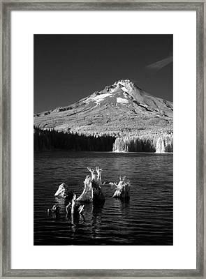 Trillium Lake Framed Print