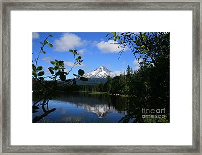 Trillium Lake With Mt. Hood  Framed Print by Ian Donley