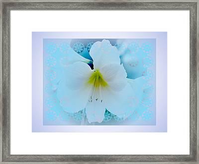 White Lily Framed Print by Larry Capra