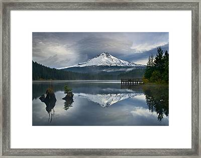 Trillium Reflections Framed Print by David  Forster
